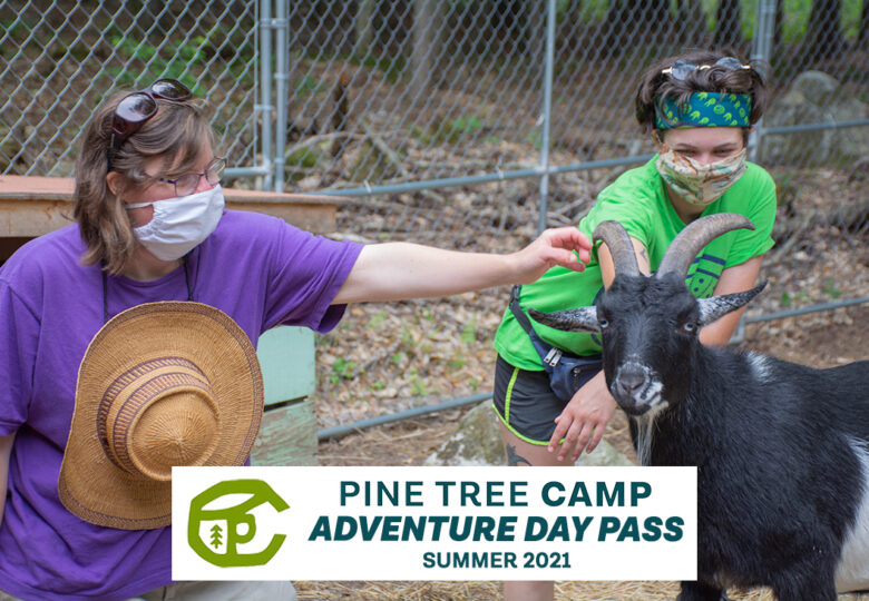 View Pine Tree Camp to You: Adventure Day Pass